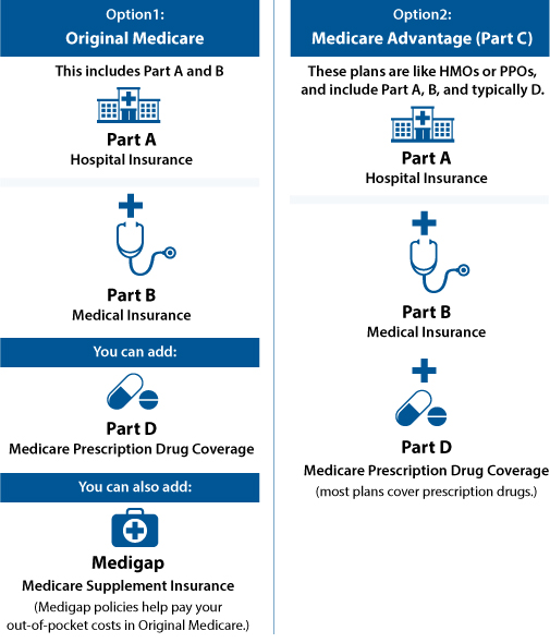 Medicare Options Graph